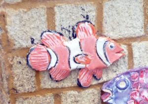 Jodi Fish